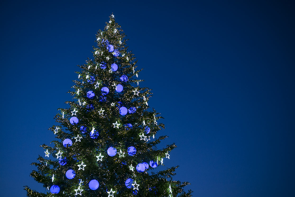 Strasbourg's Christmas Tree: the story behind the magic