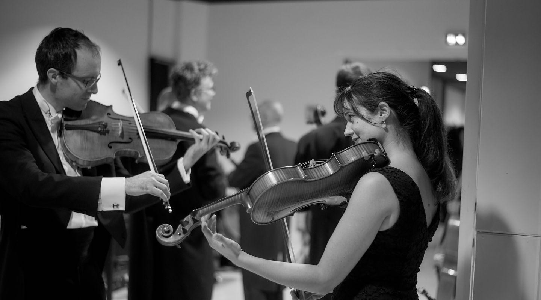image - À la découverte des instruments : Trio flûte, alto et harpe